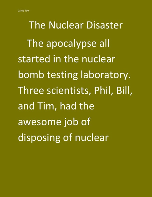 The Nuclear Disaster