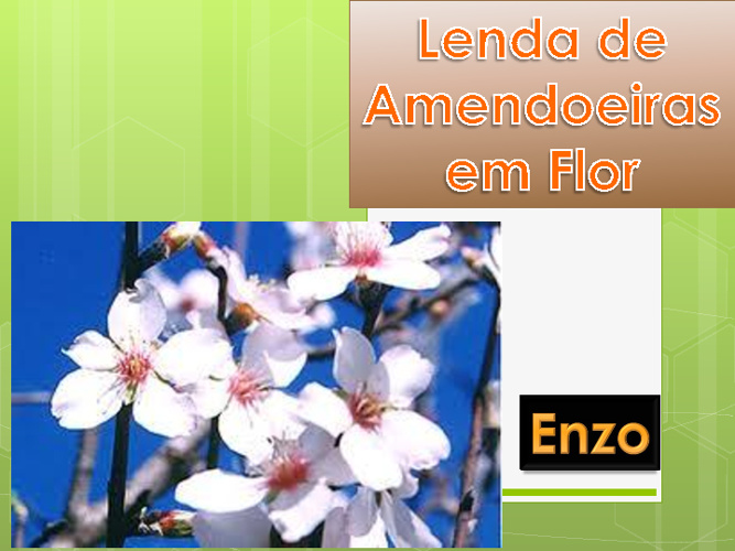 Lenda de Amendoeiras em Flor