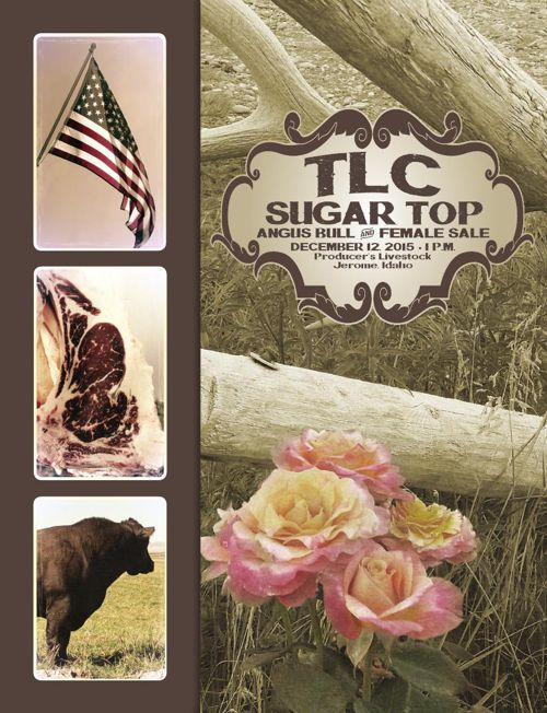 2015-TLC-SUGAR-TOP-SALE-BOOK