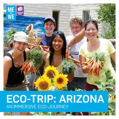 Arizona Trip Brochure