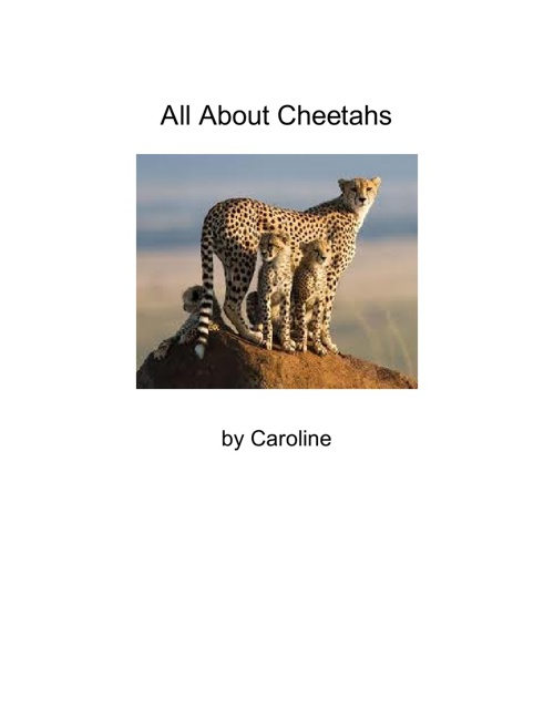 All About Cheetahs - Caroline