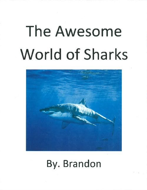 Sharks by. Brandon