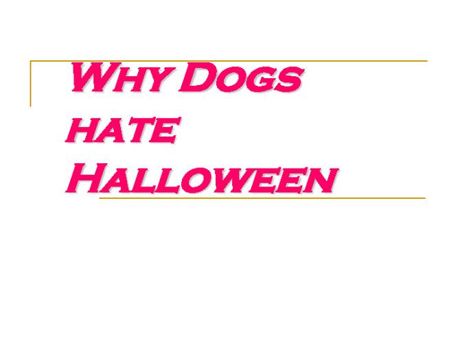Perros en jalogüin