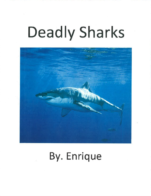 Sharks by. Enrique