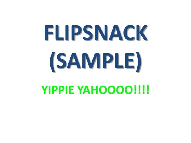 NEW FLIPSNACK SAMPLE