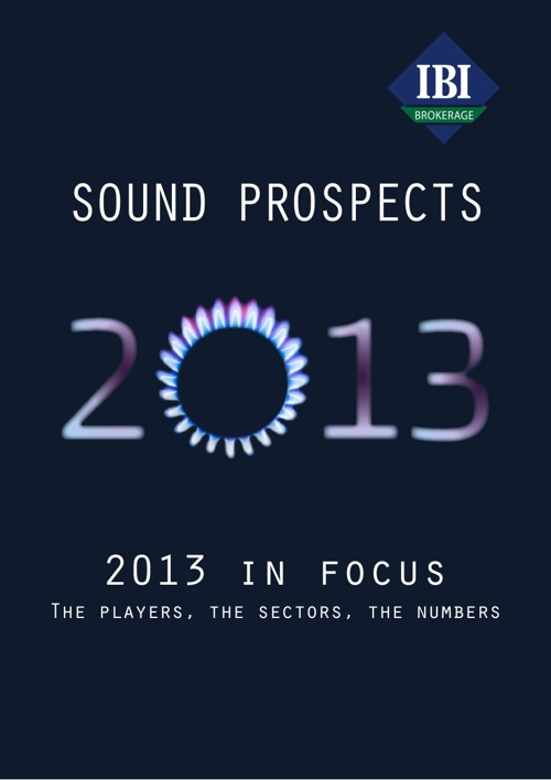 2013 in focus - IBI Brokerage & investments