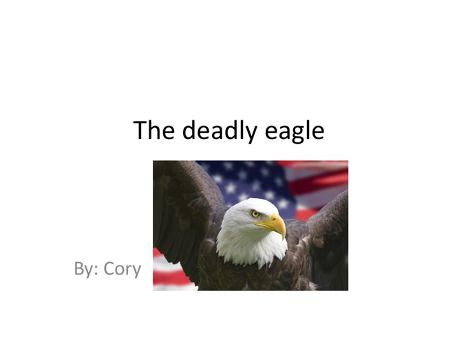 Cory The Deadly Eagle