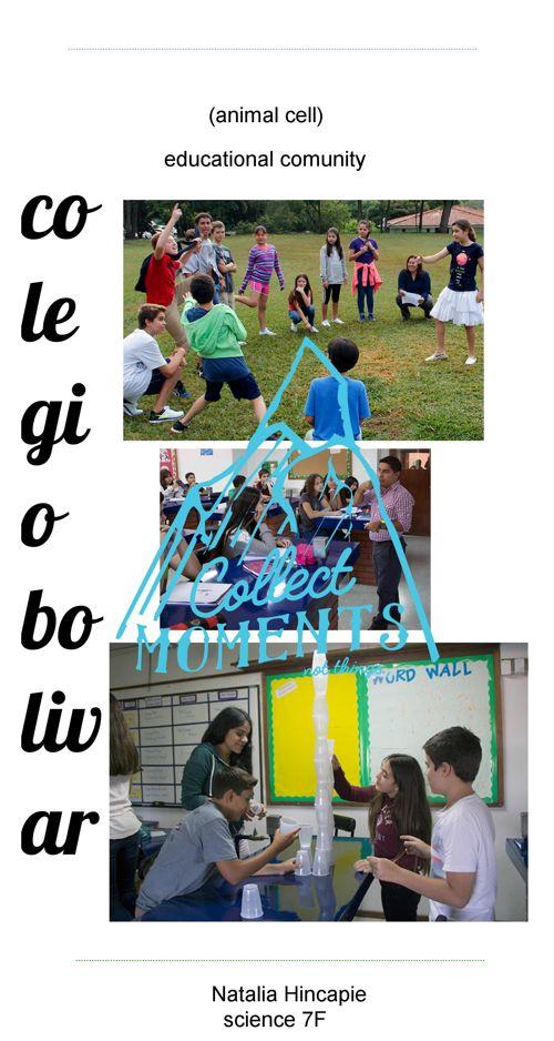 brochure colegio bolivar cell