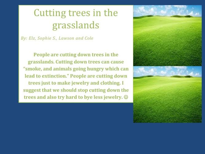 grassland presintation