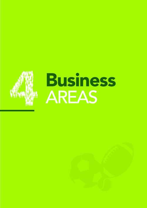 4. BUSINESS AREAS