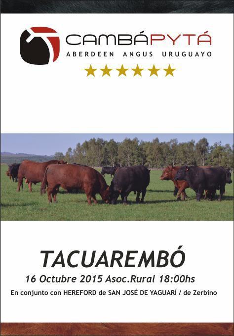 Catálogo Tacuarembó 2015
