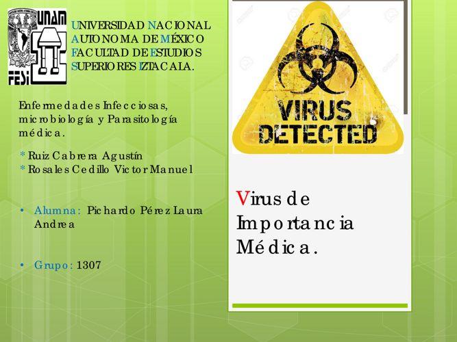 Virus de Importancia Médica