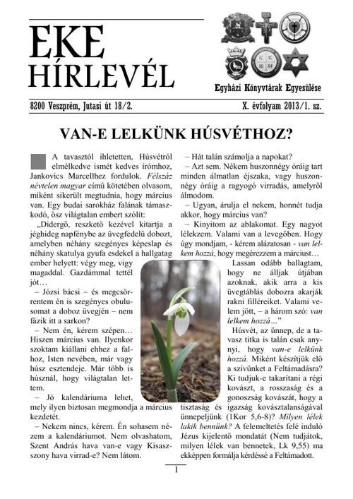EKE HIRLEVEL X. 2013/1.