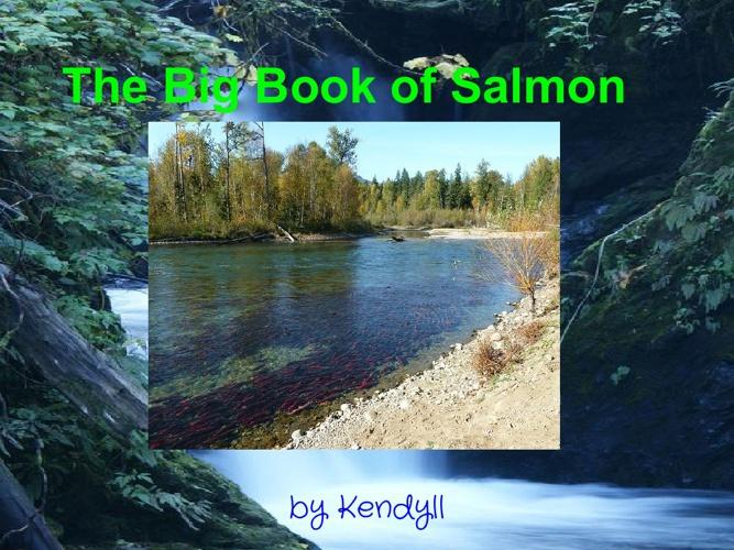 The Big Book of Salmon