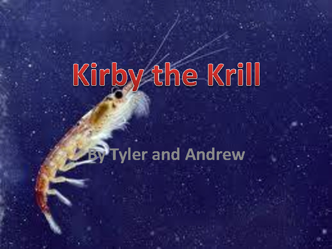 Kirby the Krill