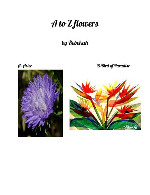 A-Z Flowers