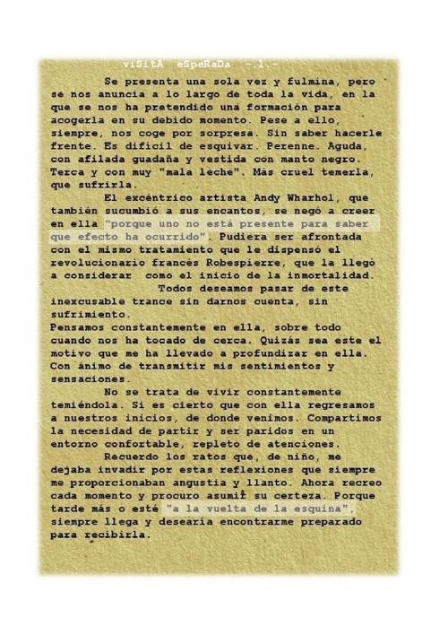 VISITA ESPERADA artículo próximo Nervae.