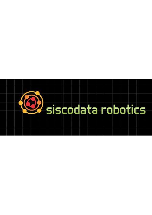 SISCODATA Magazine articles