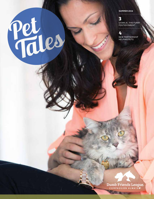 2016 Summer Pet Tales