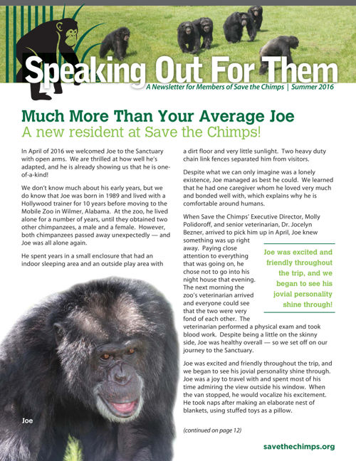 Speaking Out For Them - Save the Chimps Newsletter | Summer