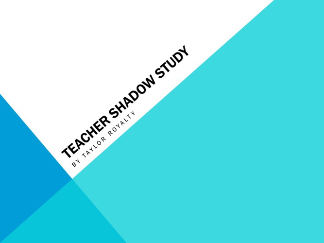 Teacher Shadow Study