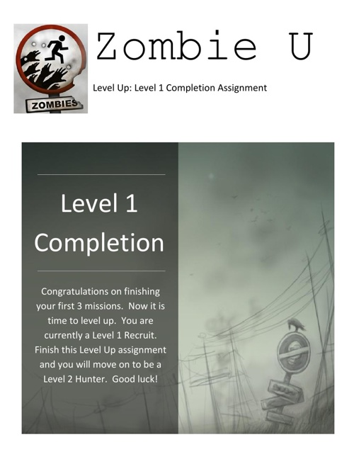 Level 1 Completion Assignment