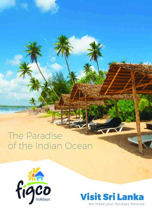 Figco Travel Brochure V1.3-ilovepdf-compressed