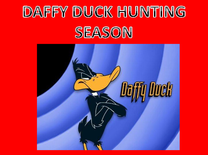 daffy duck hunting