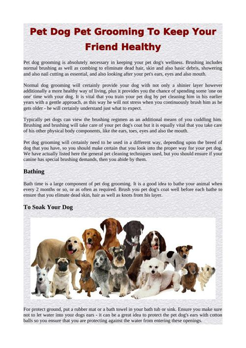 Pet Dog Pet Grooming To Keep Your Friend Healthy