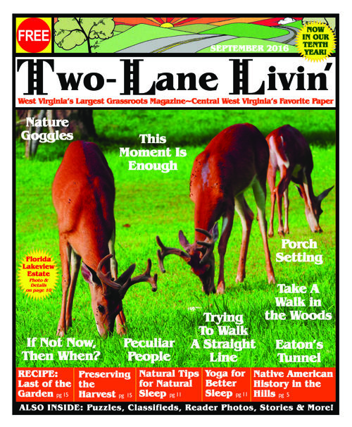 Two Lane Livin: September 2016