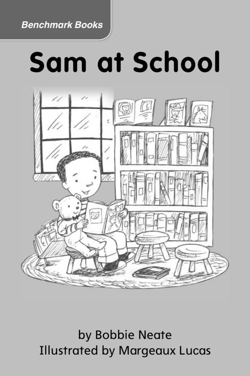 Sam at School (DRA 1)
