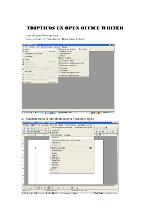 TRIPTICO EN OPEN OFFICE WRITER
