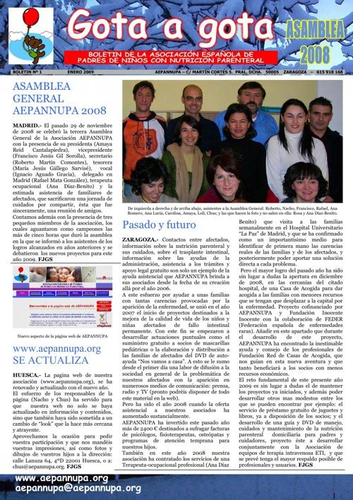 Boletín 1 Enero 2009