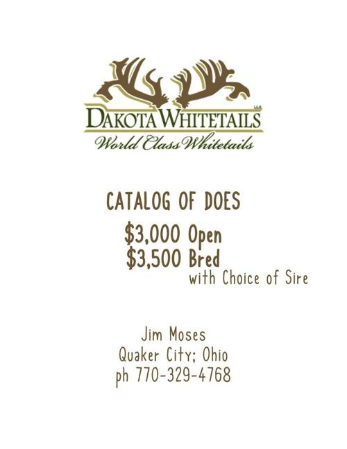 Dakota Whitetails 2007-2011 Does For Sale