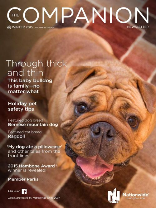Companion Newsletter - Fall 2015 - Nationwide Pet Insurance