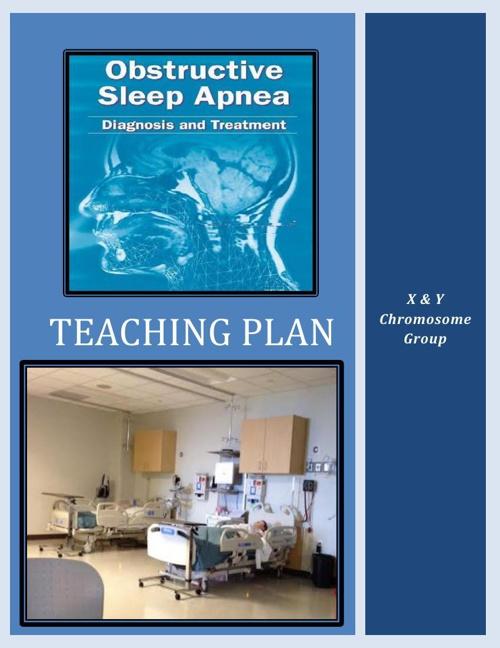 Teaching Plan By Dr. L Hettich