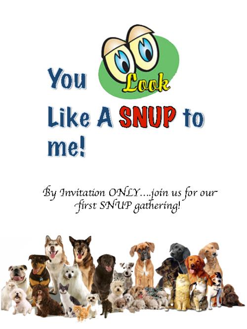SNUP Gathering Invitation