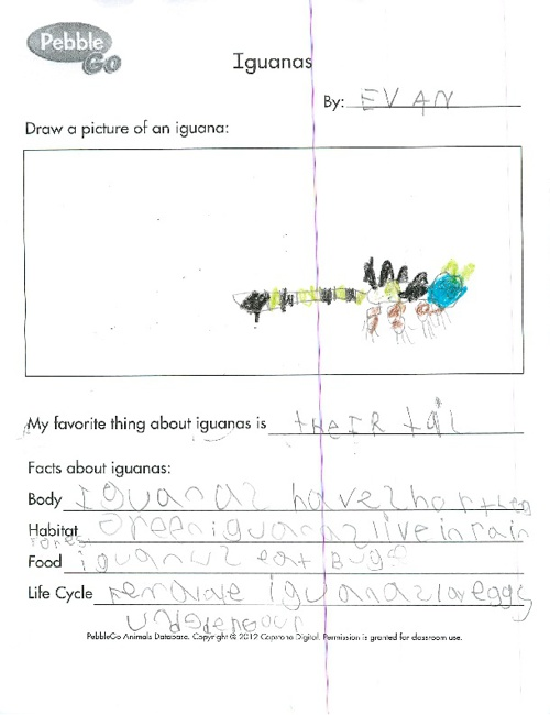 Animals and Their Habitats by Ms. Smith's 1st Grade 2012-2013