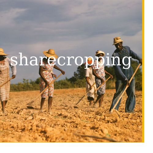 sharecropping