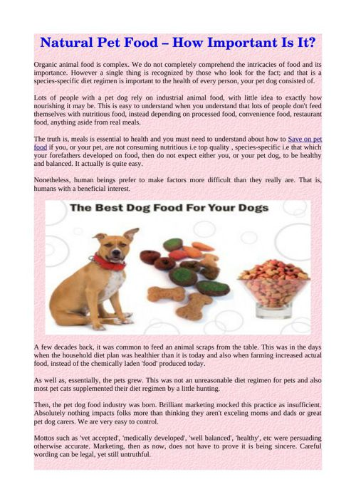 Natural Pet Food – How Important Is It