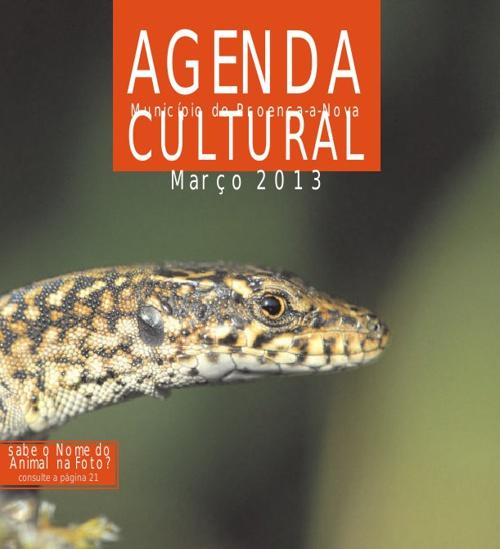 Teste de Agenda Cultural