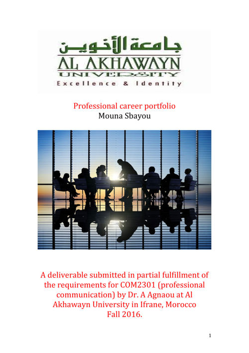 Professional-career-portfolio-copy-2