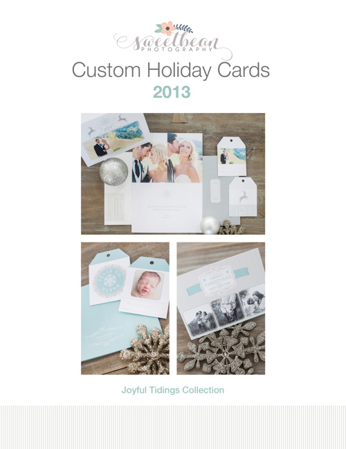 Copy of Holiday Cards 2013