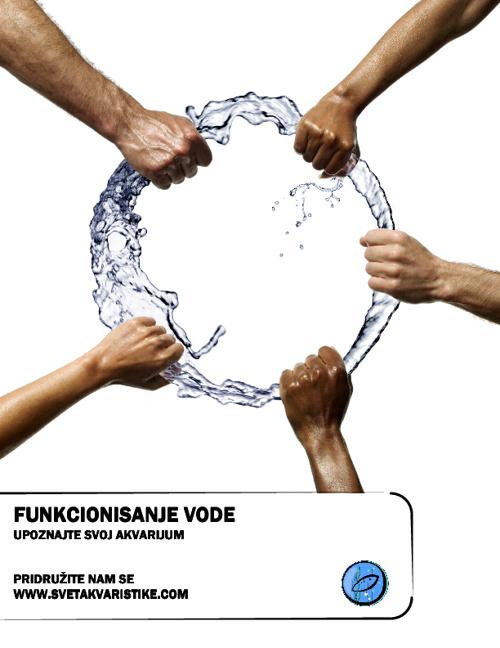 Funkcionisanje vode