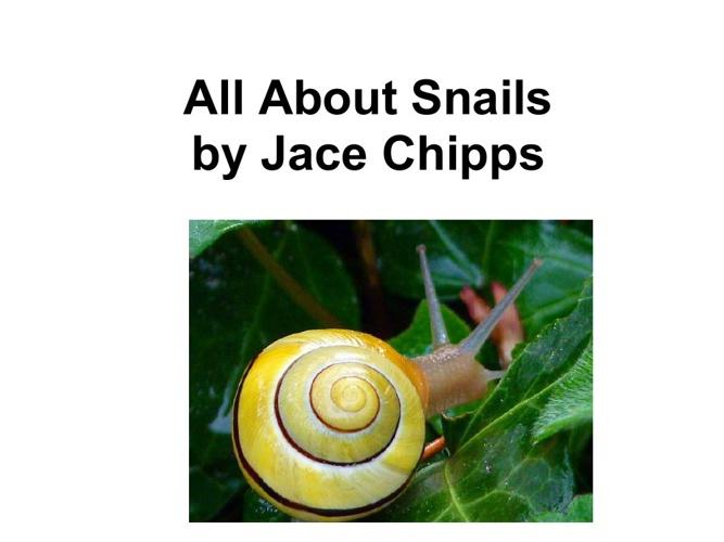 Jace's snail book