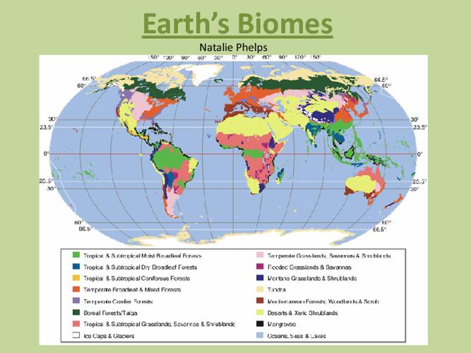 Earth's Biomes Book
