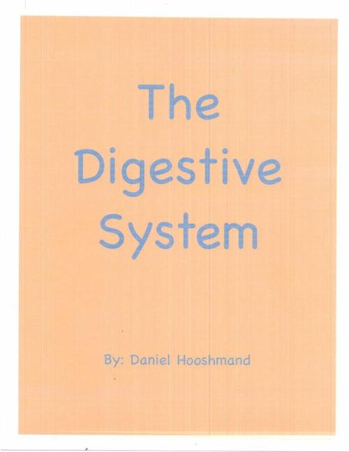The Digestive System By Daniel Hooshmand