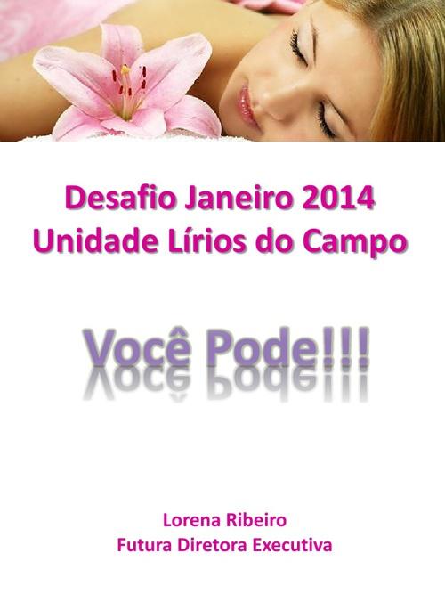Desafio Janeiro de 2014 - Unidade Lírios do Campo