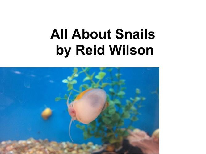 Reid's snail book