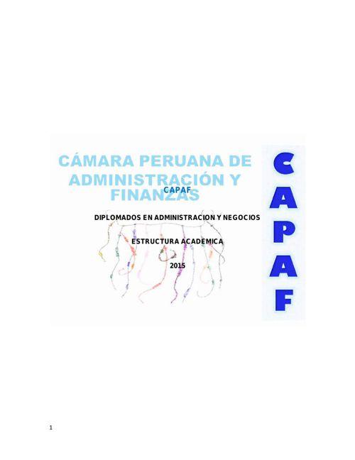 Estructura Academica de los Diplomados en Administracion y Negoc
